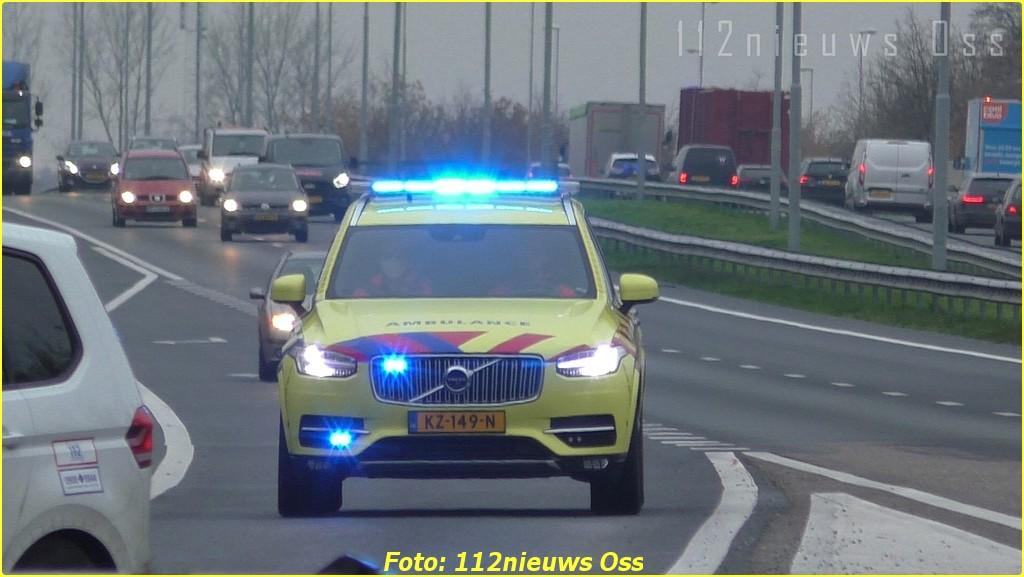 DL1 (2)-BorderMaker